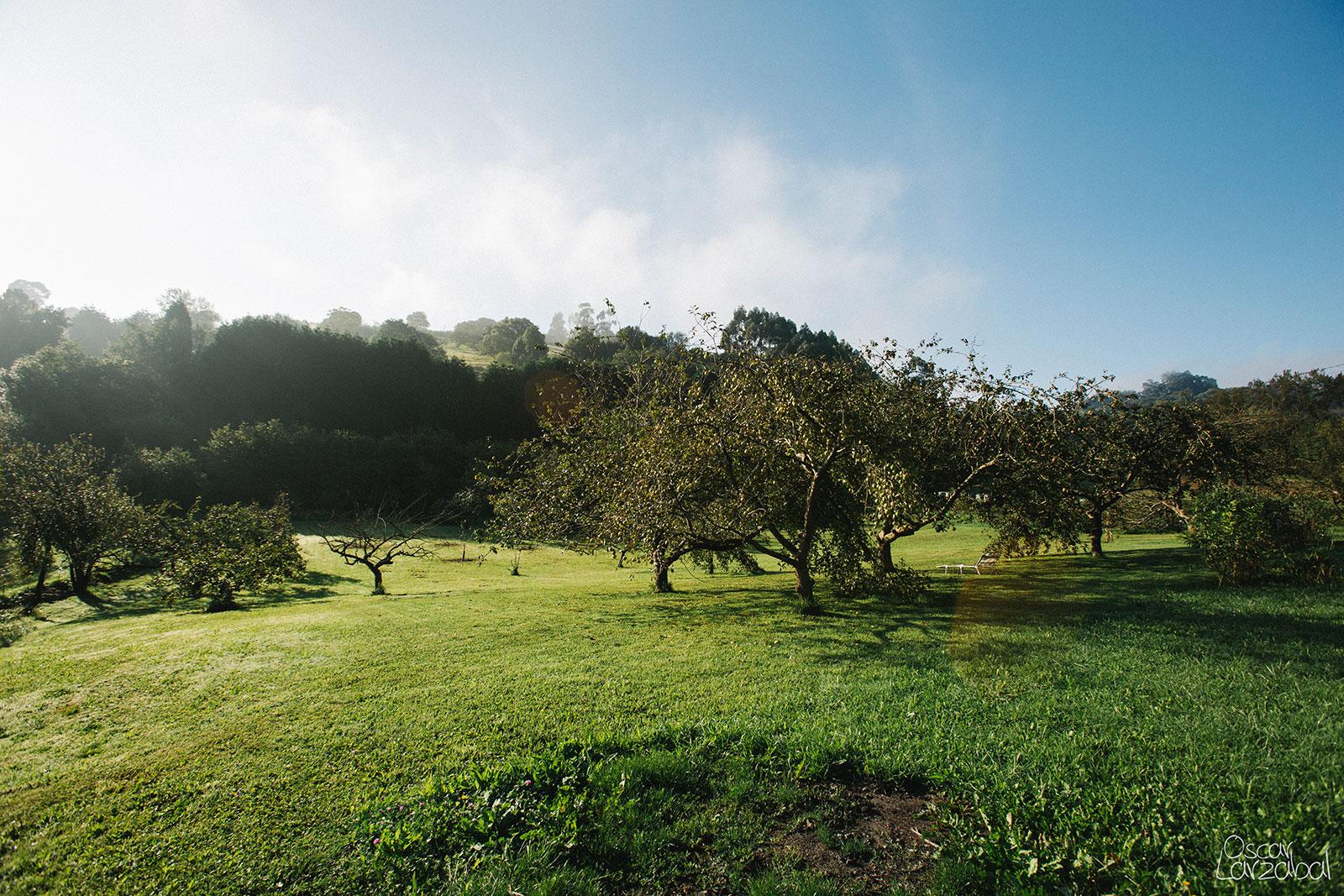 Fotógrafo Asturias, Cantabria, Santander, Ribamontán Al Mar, Galizano, Carriazo, Castanedo